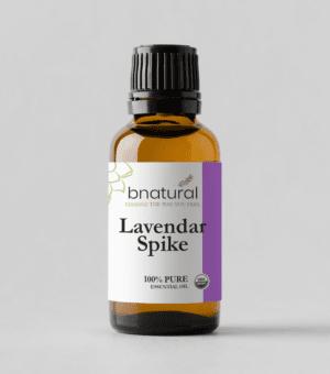 bnatural lavender spike essential oil